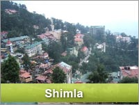 delhi to shimla car tour